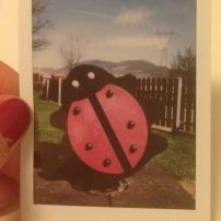 A ladybug playscape in Austria