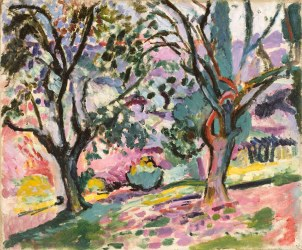 Olive Trees at Collioure, ca 1906